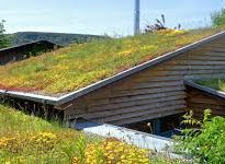 Renewable Roof Systems